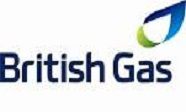 RDM Engineering Client, British Gas